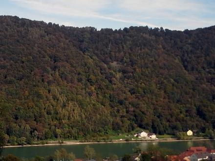 1ro03-2016.10.14-blick-auf-den-hangwald-a-m.schwarz-d1c12962f202f2ca07e162bbd3504b61