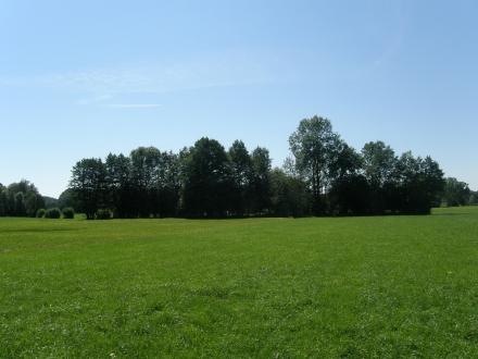 1sd10-2013.08.16-ueberblick-antershamer-wiese-a-c.leitner-3-cc478ce6b4e9a65b611c6d46c4a2a992