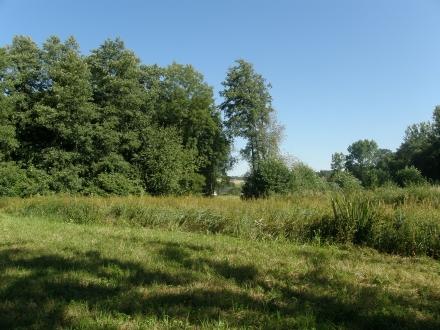2wl02-2013.08.16-feuchtwiese-nach-der-mahd-a-c.leitner-4-7dd10f17cf9b3132844f8efd107b0978