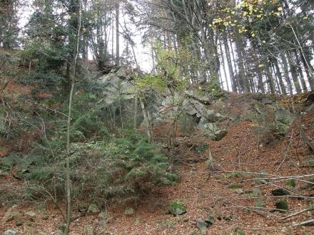 4ef03-2013.10.29-bewaldeter-steinbruch-a-c.leitner-2-e0f4cd2280ed6c3322ee9a91db5d8a68