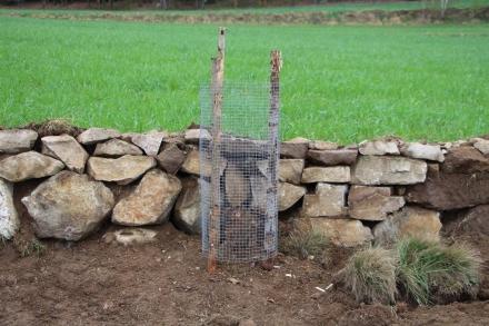 6fr02-2015.04.24-trockensteinmauersanierung-d.priller-3-b93953cb2cdf4dee66f736ea6172e50c