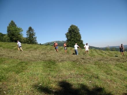 8kl02-2007.08.06-bergmandl-beim-heu-zusammenrechen-a-w.bejvl-e010a86473342bb51c3551d79f46d194