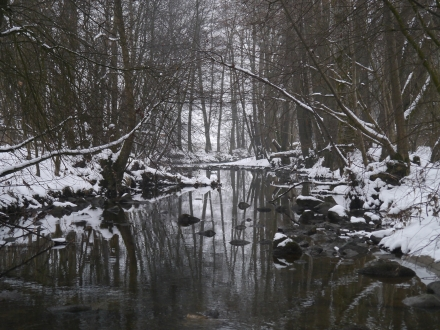 gr01-2013.02.26-leithenbach-im-winter-a-d.priller-1-faa4ca818a78483268b22e98479f8a57