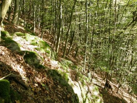 gr05-2012.10.11-hangwald-a-c.leitner-1-1c4f984b0661edbe6c77eb39431f7418